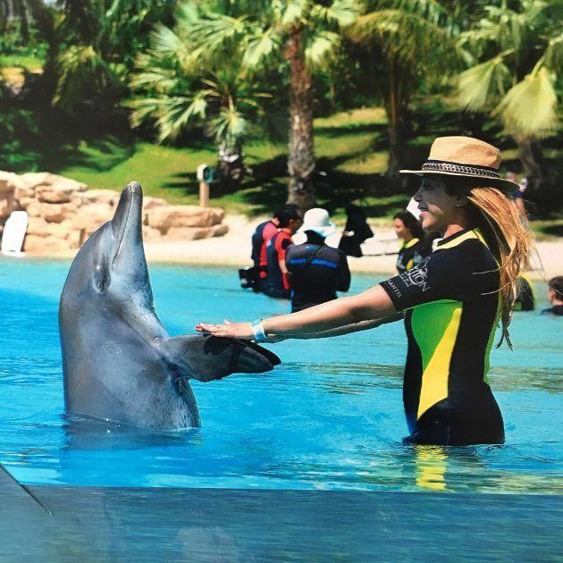 أروى ترقص مع الدولفين
