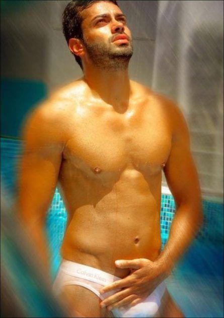 محمد شمس الدين ملك جمال لبنان
