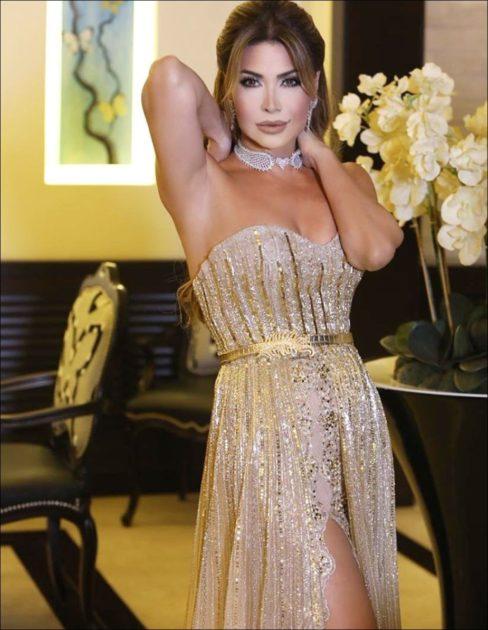 فستان نوال الزغبي الأجمل بين فساتين النجمات