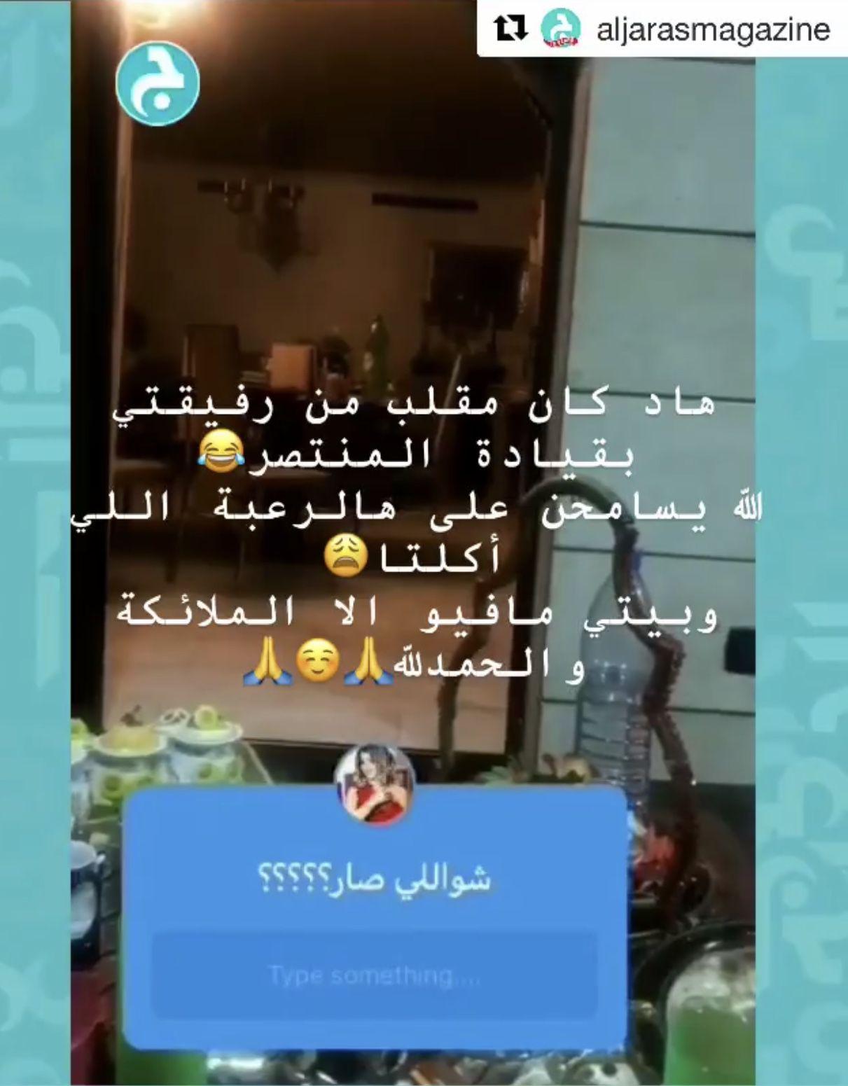 توضيح سوزان نجم الدين
