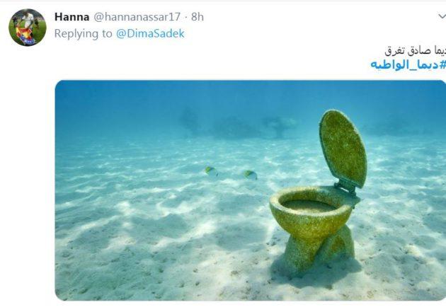ديما صادق تغرق ديما الواطية إحدى التغريدات التي لم تثنِ ديما عن نشاطها غير المثمر
