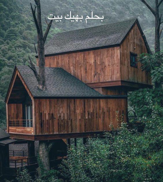 منزل احلام اصالة نصري