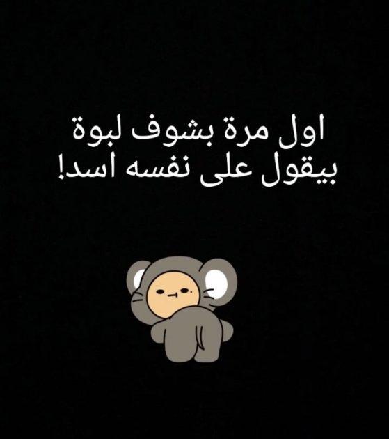 تعليق هيفا ووصفها لمحمد باللبوة