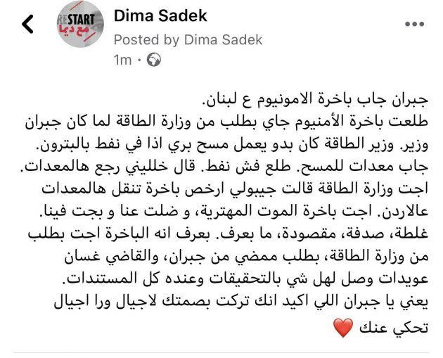ما قالته ديما صادق عن جبران باسيل