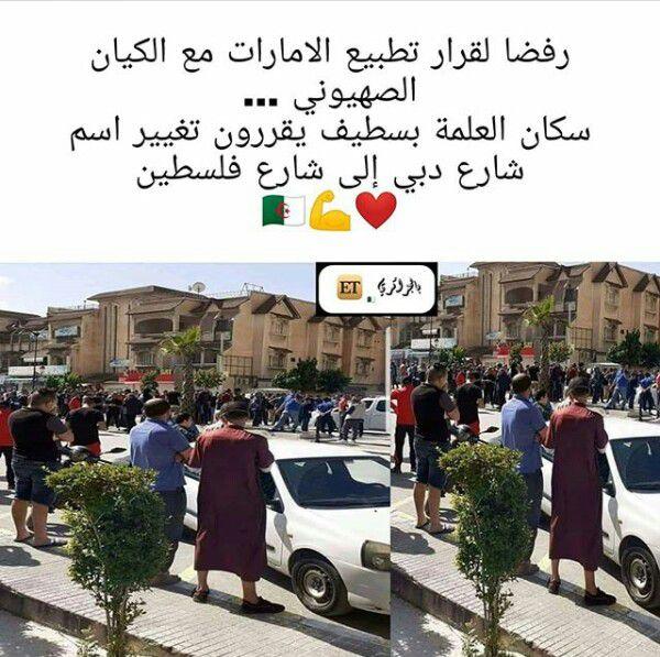 الجزائر فلسطين